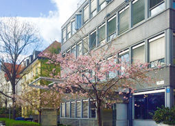 Gebäude Kirschblüten